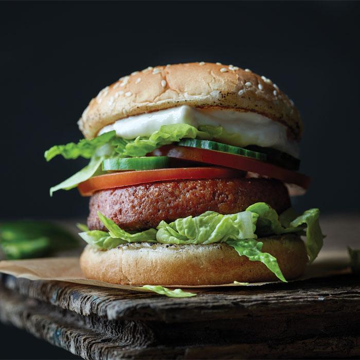 southwest_burger